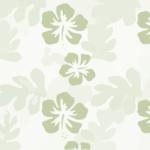 hibiscus-303637_640